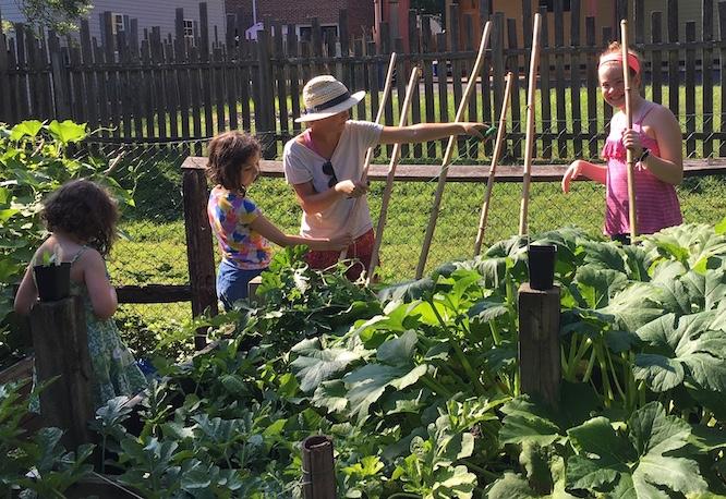 Gardeners, watermelon, zucchini