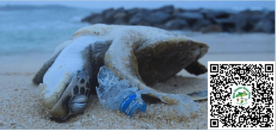 Plastics vigil